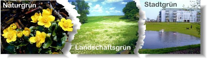 Berliner Landesarbeitsgemeinschaft Naturschutz e.V. (BLN)