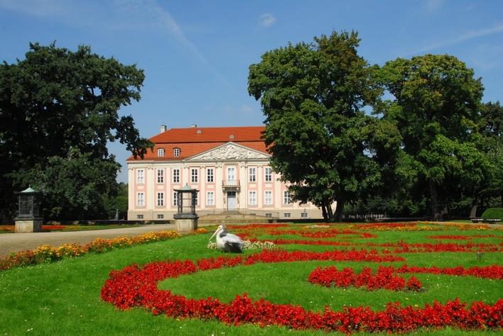 Schloss Friedrichsfelde mit Pelikan