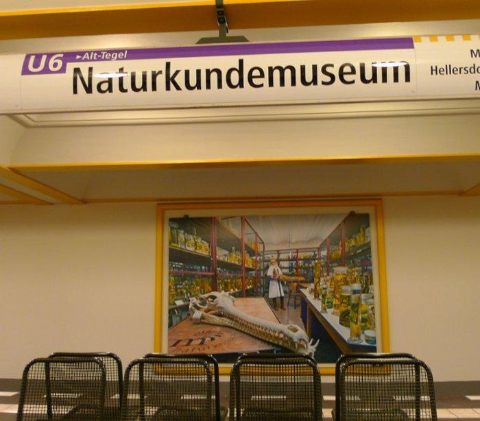 U-Bahnhof Naturkundemuseum (U6)