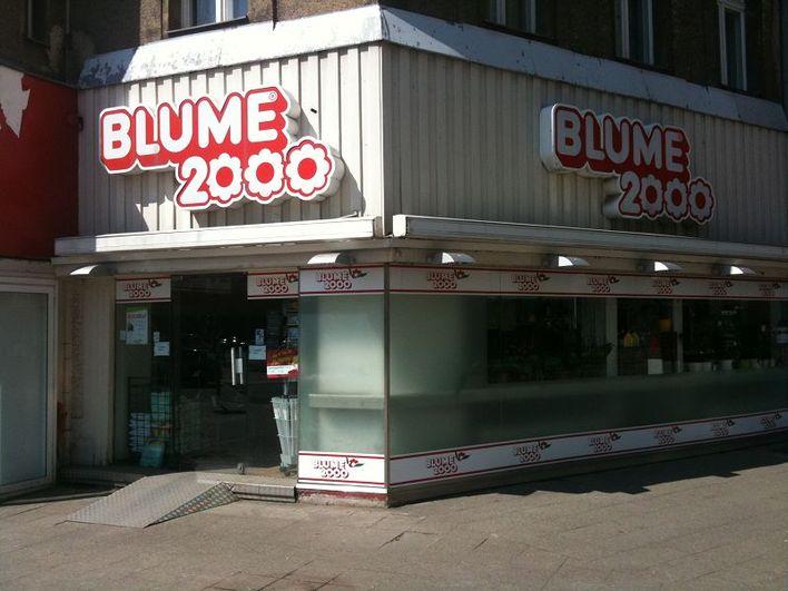 BLUME 2000 - Lindenallee am Theodor-Heuss-Platz