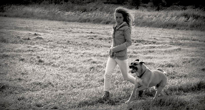 Tierverhaltenstherapie Dr. med. vet. Stephanie Adams