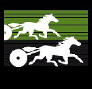 Berliner-Trabrenn-Verein e.V.