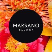 Blumen Marsano Berlin