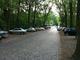 Der Siemenswerderweg von der Waldschänke aus gesehen.